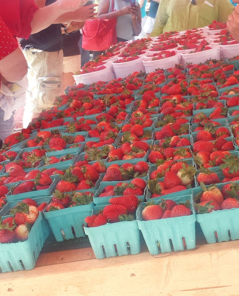 Strawberry Faire